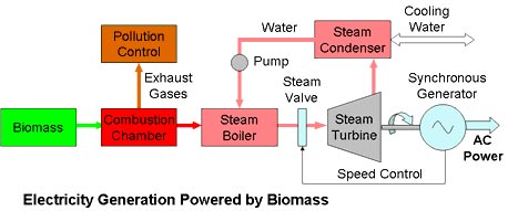 Biomass Power Plant